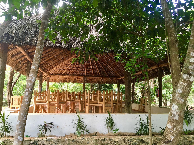 Hammocks_and_Ruins_What_to_Do_Yucatan_cenote_38.jpg