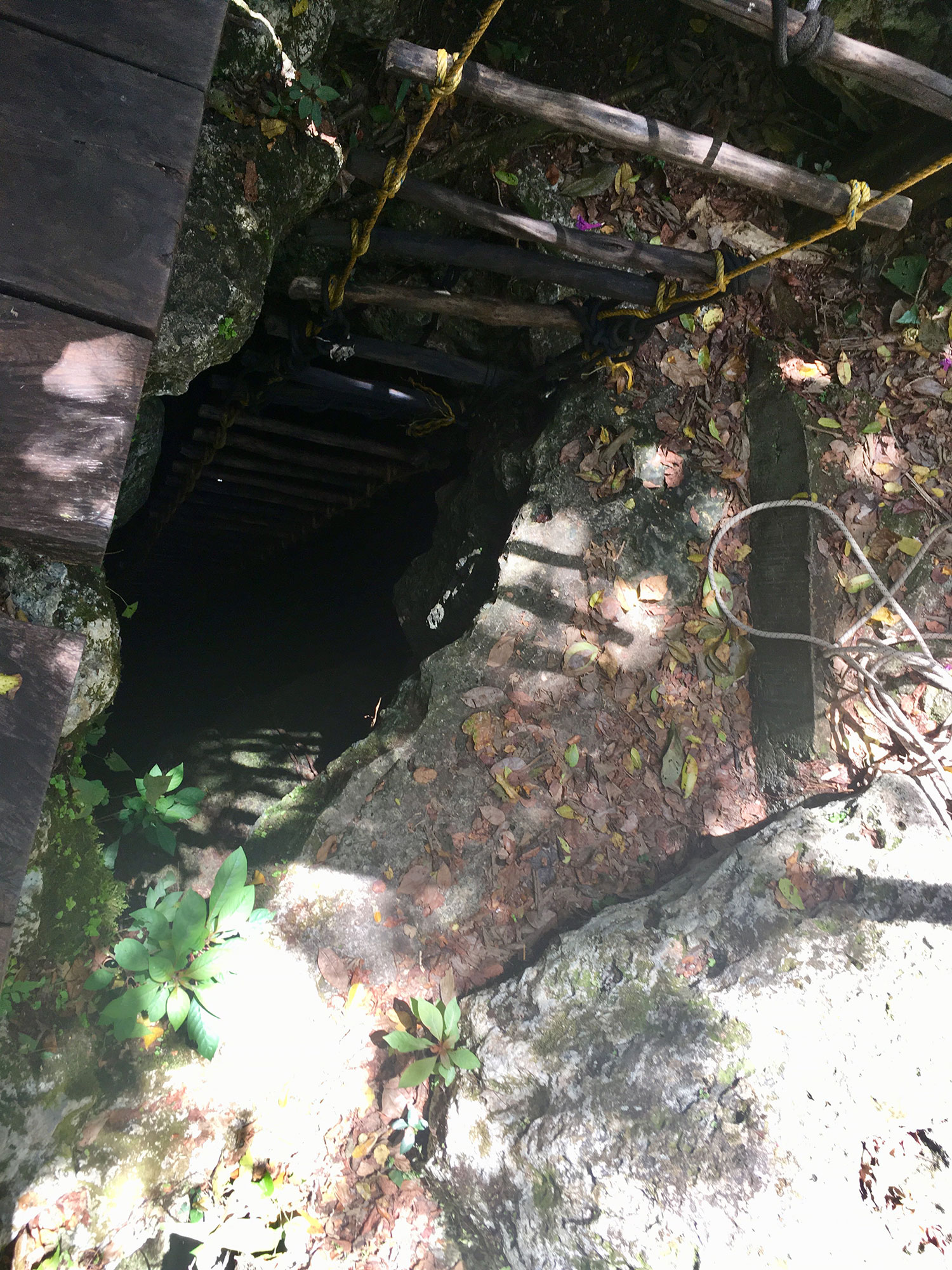 The entrance to the cenote.