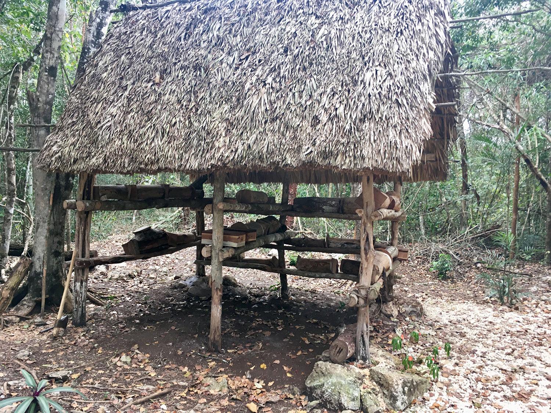 Hammocks_and_Ruins_What_to_Do_Yucatan_jungle_village_indigenous_Alde Maya_Ahau_Chooc_15.jpg