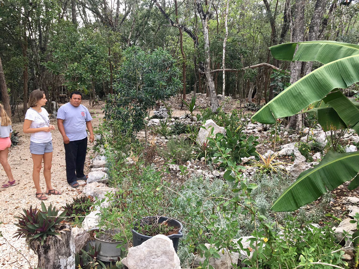 Ángel showing us their garden with medicinal plants.