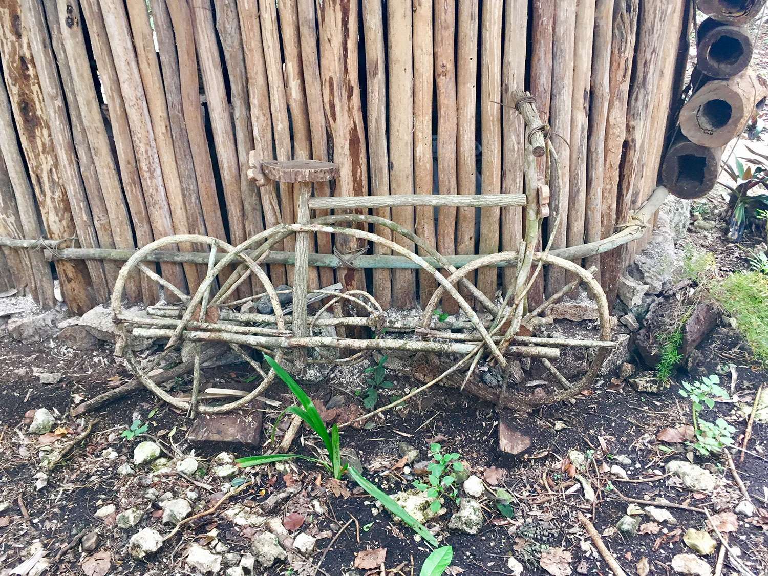 The bicycle is by the house where they display their grandfather's old objects and old ceramics found on their land from the Cobá ruins.