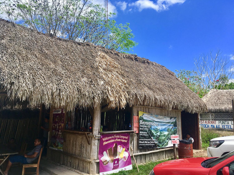 The reception. Right: the cenote access in the jungle.