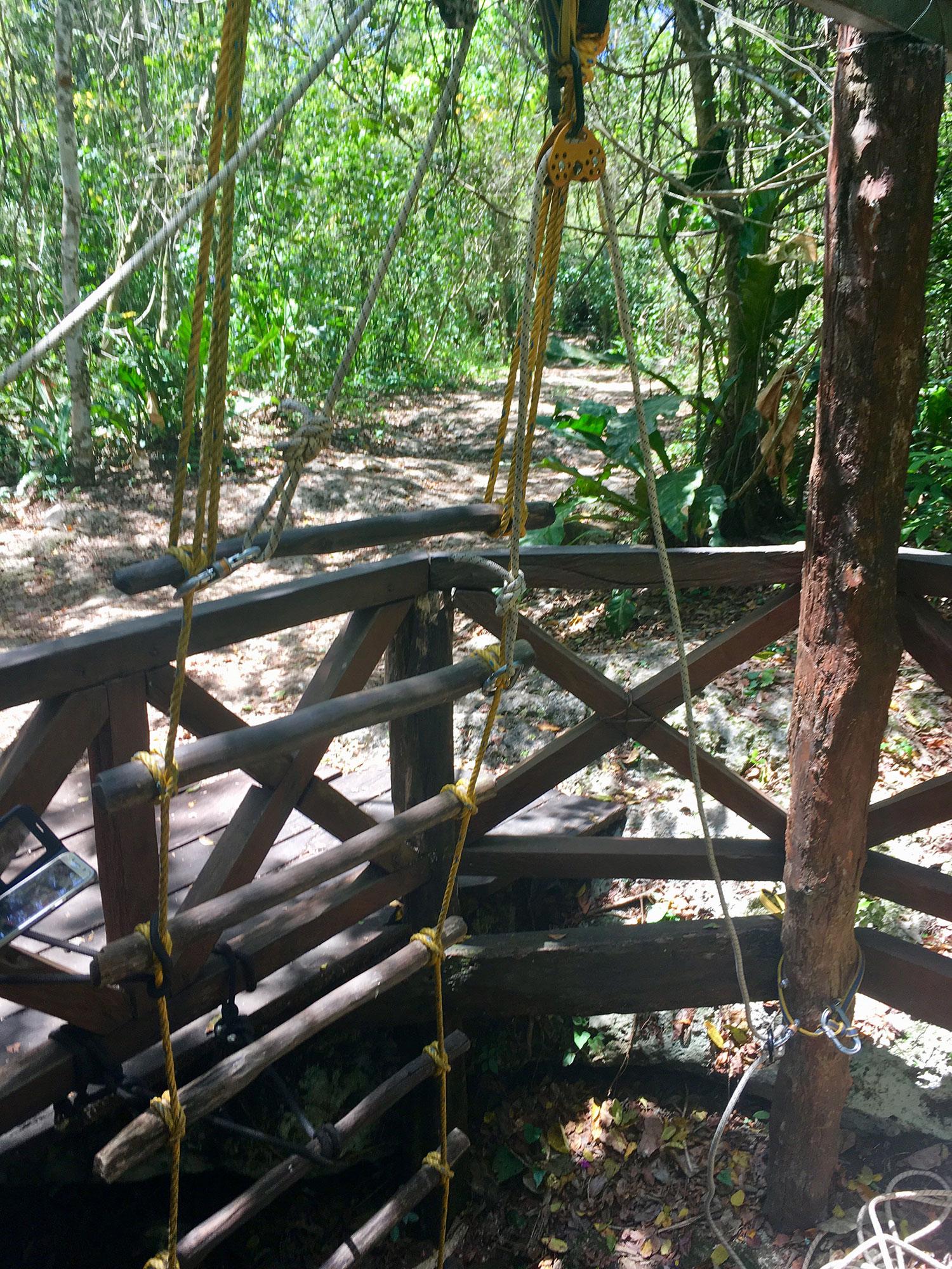 Hammocks_and_Ruins_What_to_Do_Yucatan_jungle_lake_Punta_Laguna_monkey_spider_howler_in_the_wild_12.jpg