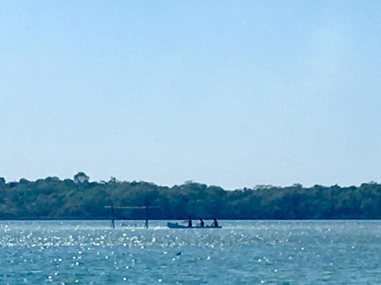Hammocks_and_Ruins_What_to_Do_Yucatan_jungle_lake_lagoon_wild_swim_kayak_Punta_Laguna_15.jpg