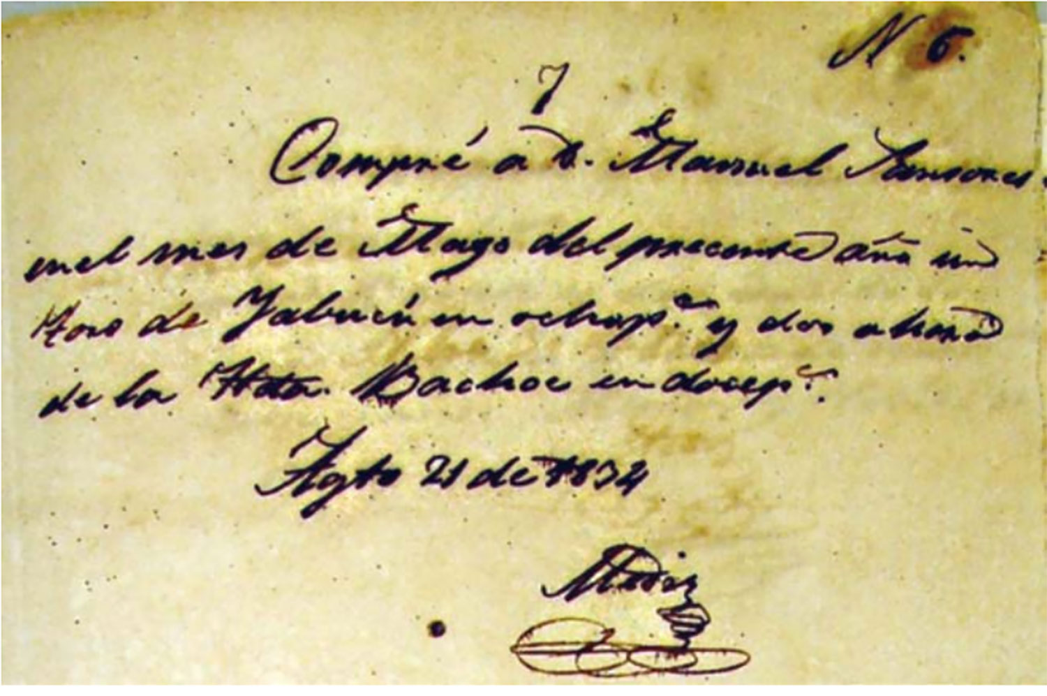 A receipt for the sale of cattle by the Cicero family from 1834. Source:  yabucu.mx .