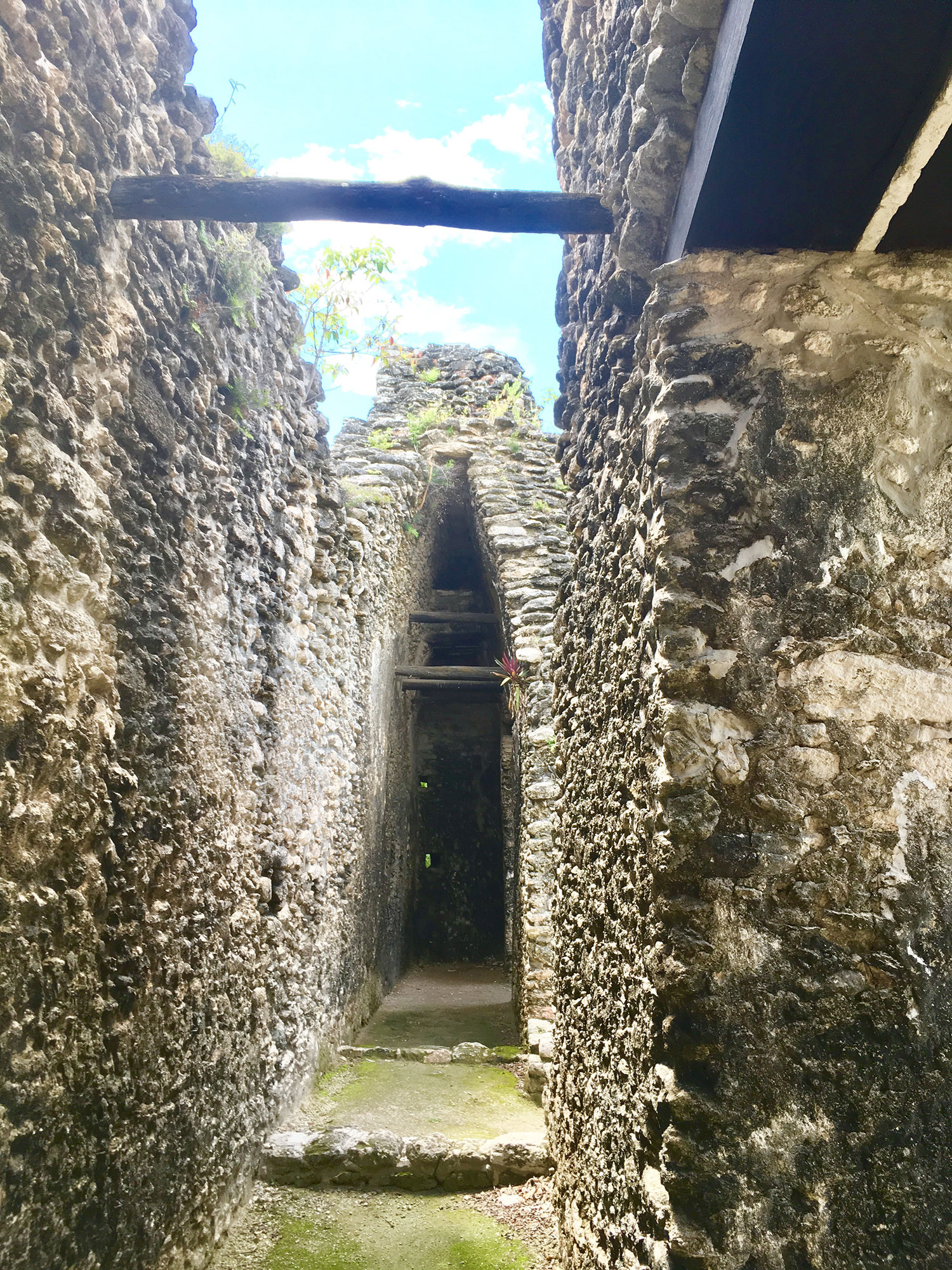 Vaulted rooms….