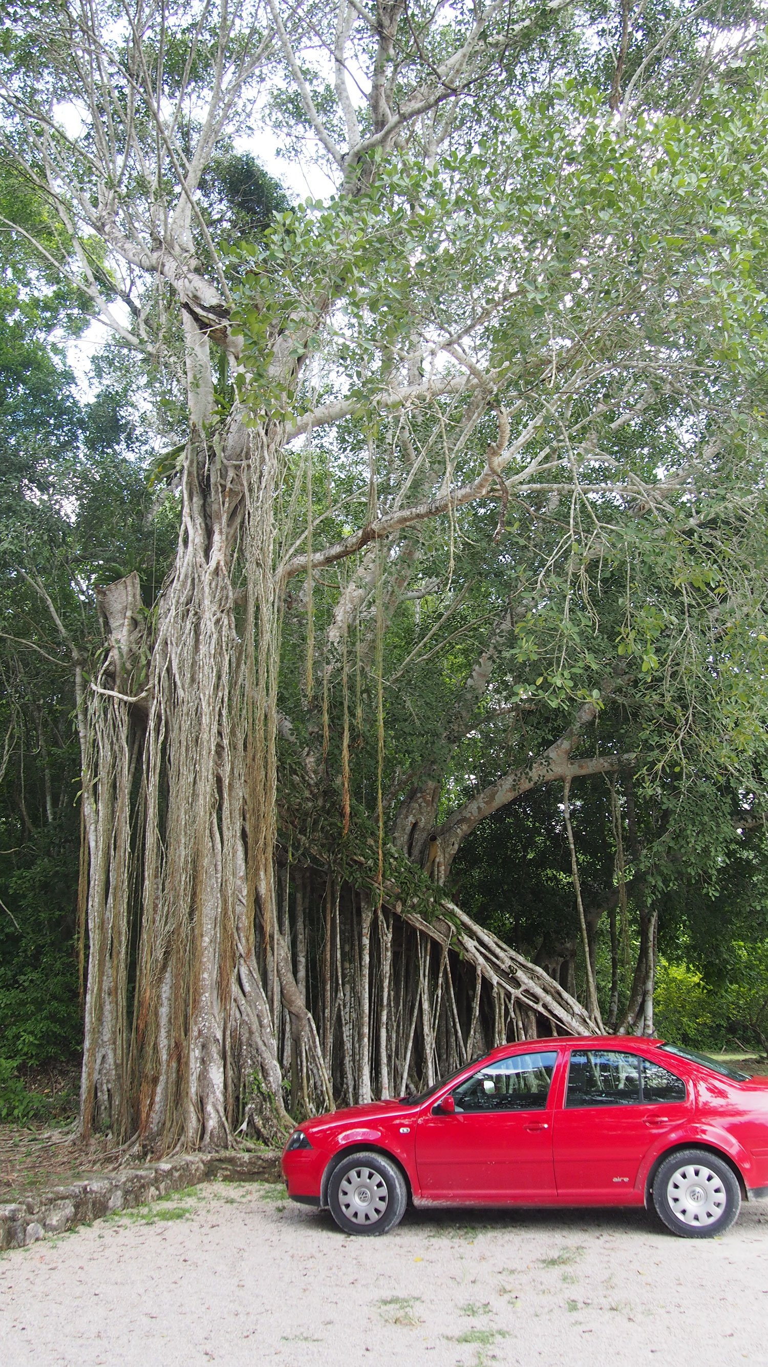 Hammocks_and_Ruins_What_to_Do_Yucatan_Mexico_pyramid_Kinichna_35.jpg