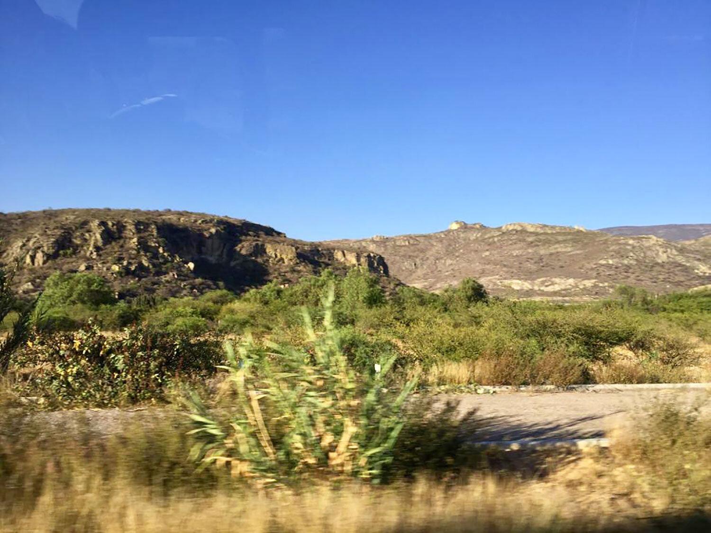 Hammocks_and_Ruins_What_to_Do_Mexico_Oaxaca_pyramids_Zapotecs_Mixtec_Mitla_3.jpg