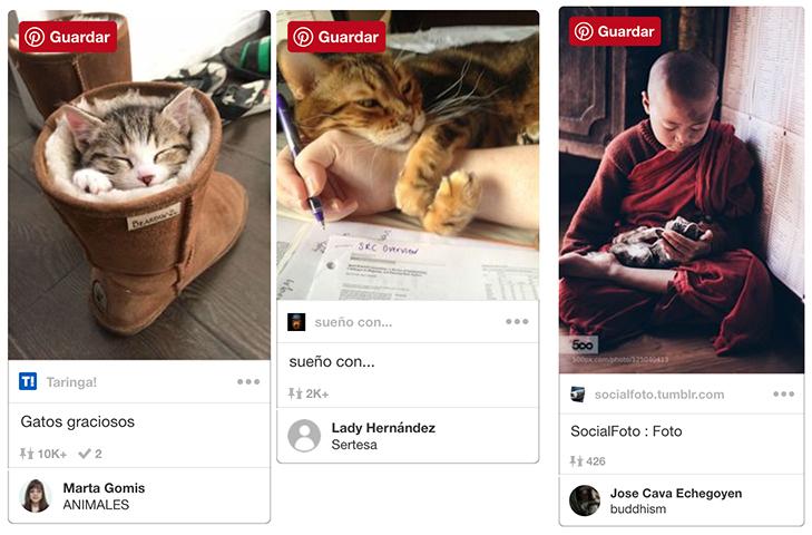 consejos_para_hacer_fotos_con_las_mascotas.jpg