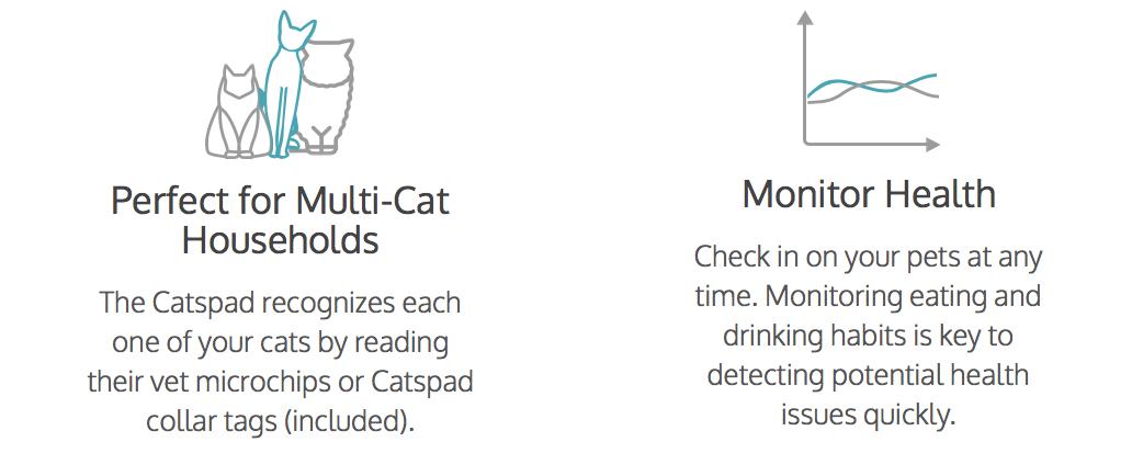 smart cat feeder.png