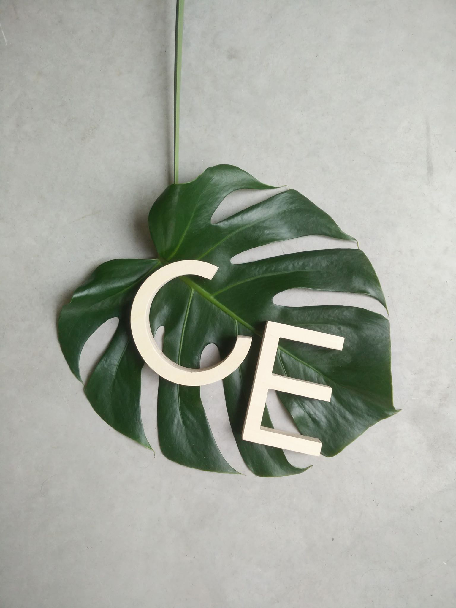 CE houten letter.jpg