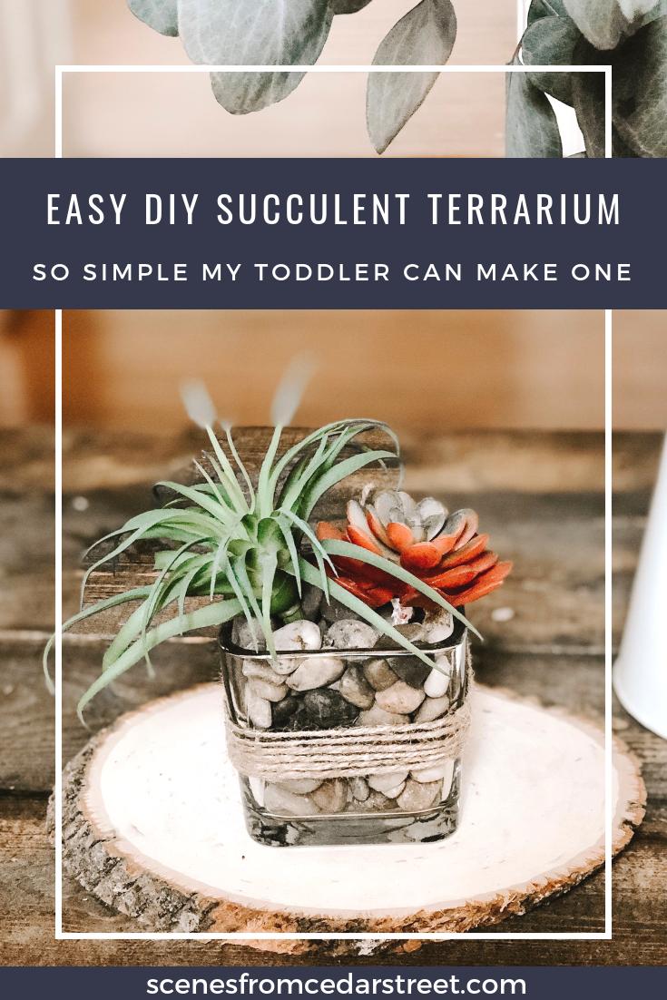 Easy DIY succulent terrarium