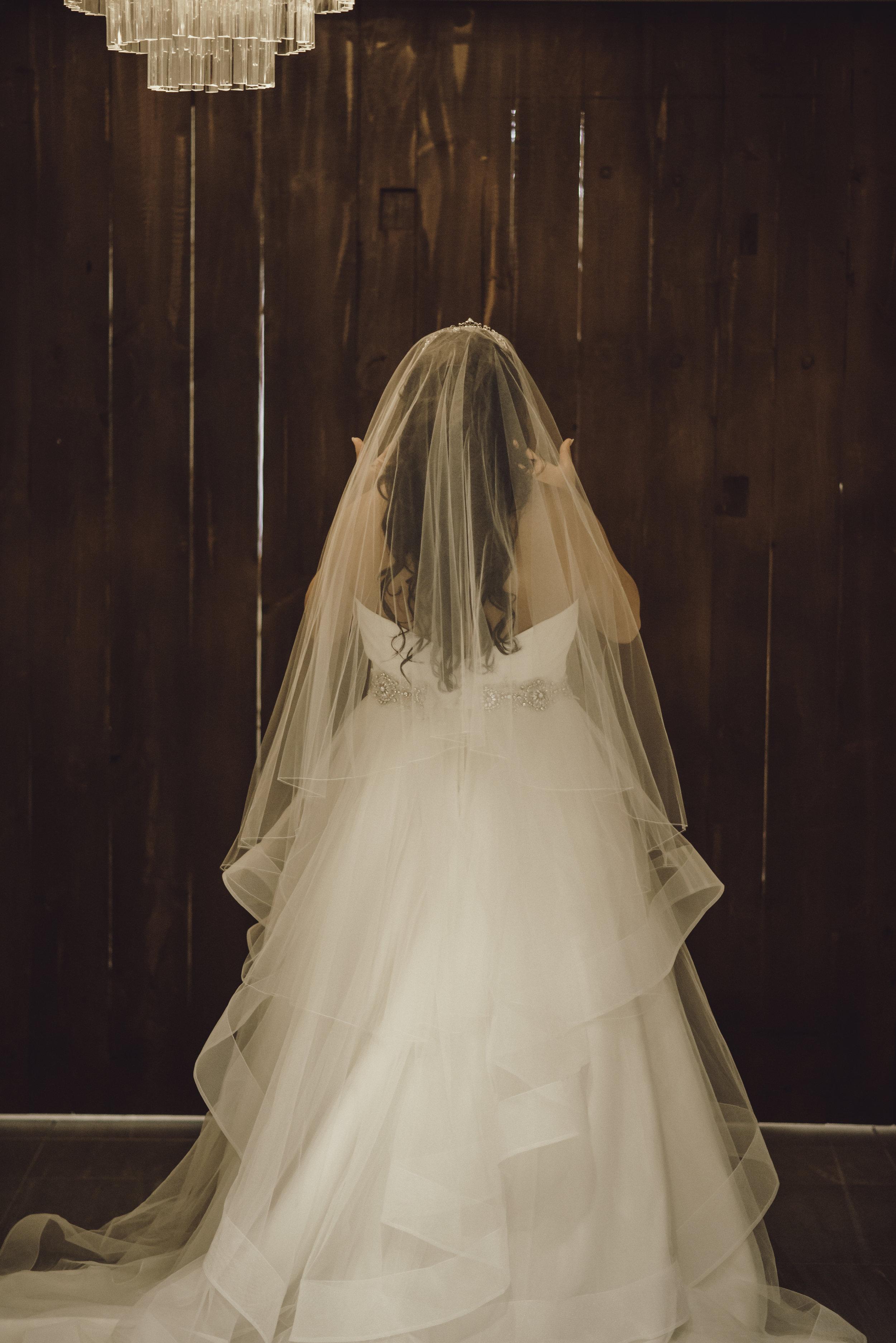 Will&Steph wedding -236.jpg