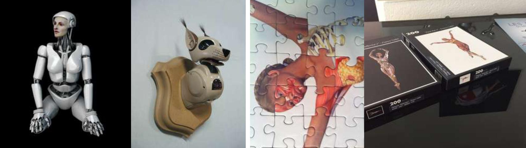 HOLOLECon n°32 (hologramme sur tablette) /Trophée de chasse (robot) / Ballerine (puzzle à assembler)