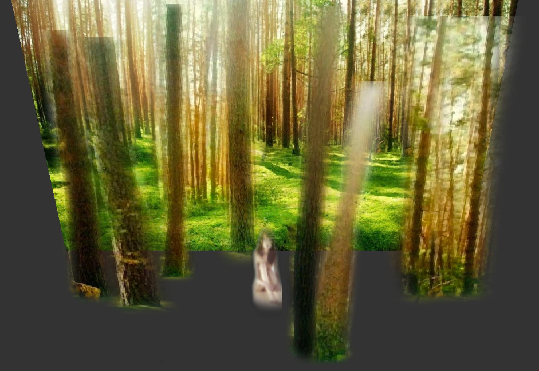 la Forêt.png