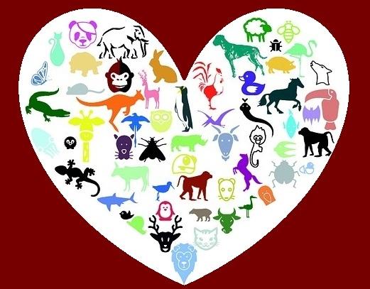 heart-678482_960_720 - Copy.jpg