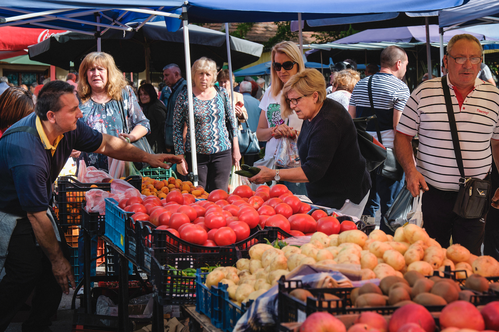 An open market in Pavlikeni, Bulgaria, in the region of Veliko Tarnovo, an area where many British people have decided to reside  Photograph: Jodi Hilton for Point.51