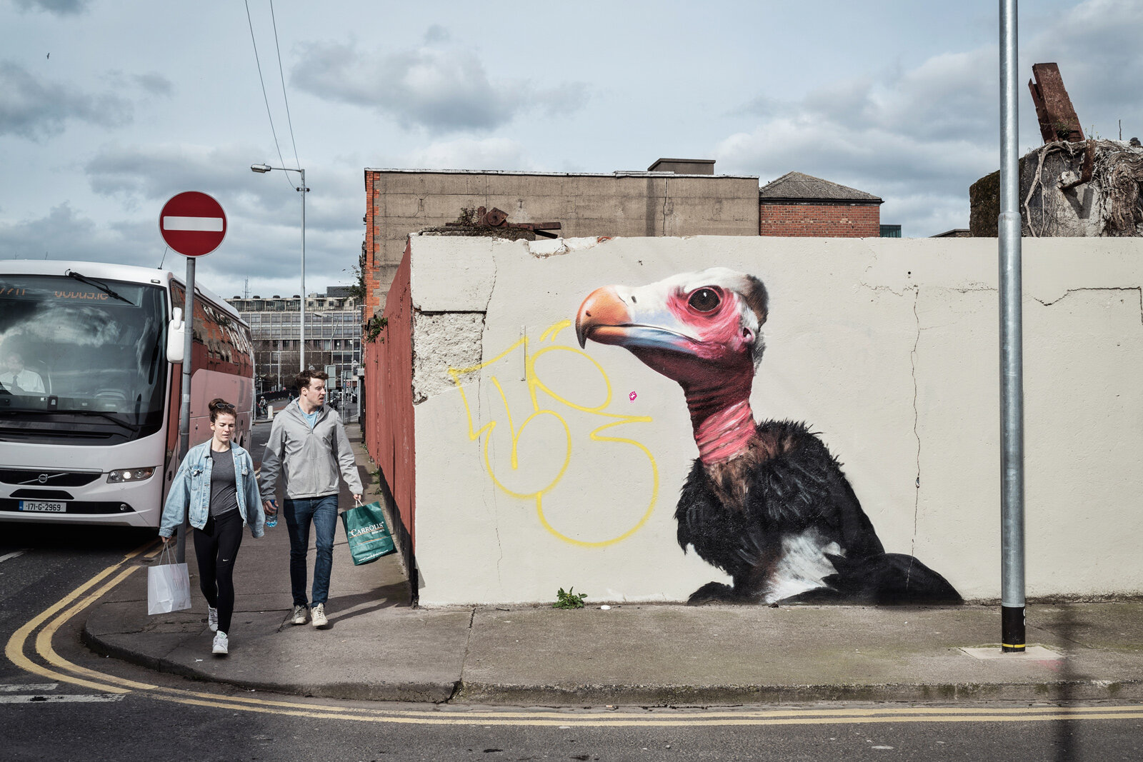 A vulture painted by Subset, a Dublin artist's group, opposite the headquarters of Ulster Bank  Photograph: Graham Martin for Point.51