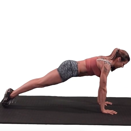 Plank Hold (Phase 1 Test)