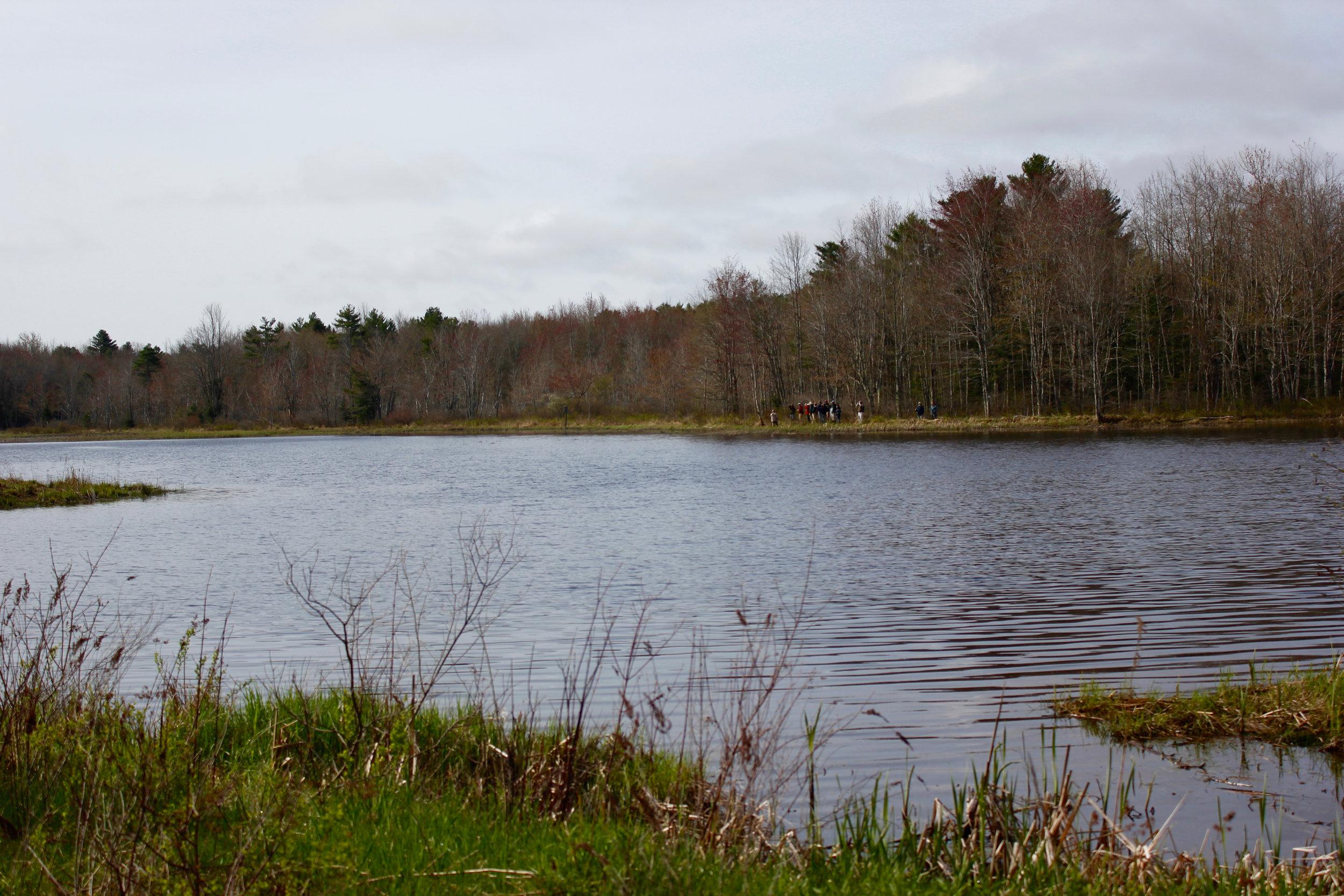 Birding group with Derek Lovitch (Freeport Wild Bird Supply) on the opposite side of the Lake