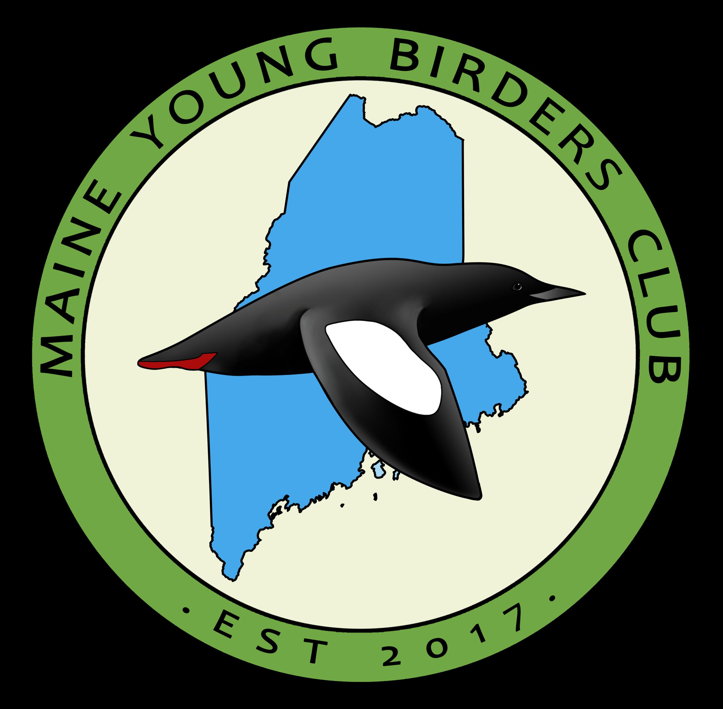 MYBC Logo by Nika Samsonenko