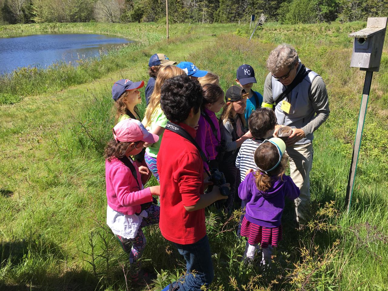 Billy Helprin shows the kids a Tree Swallow nest