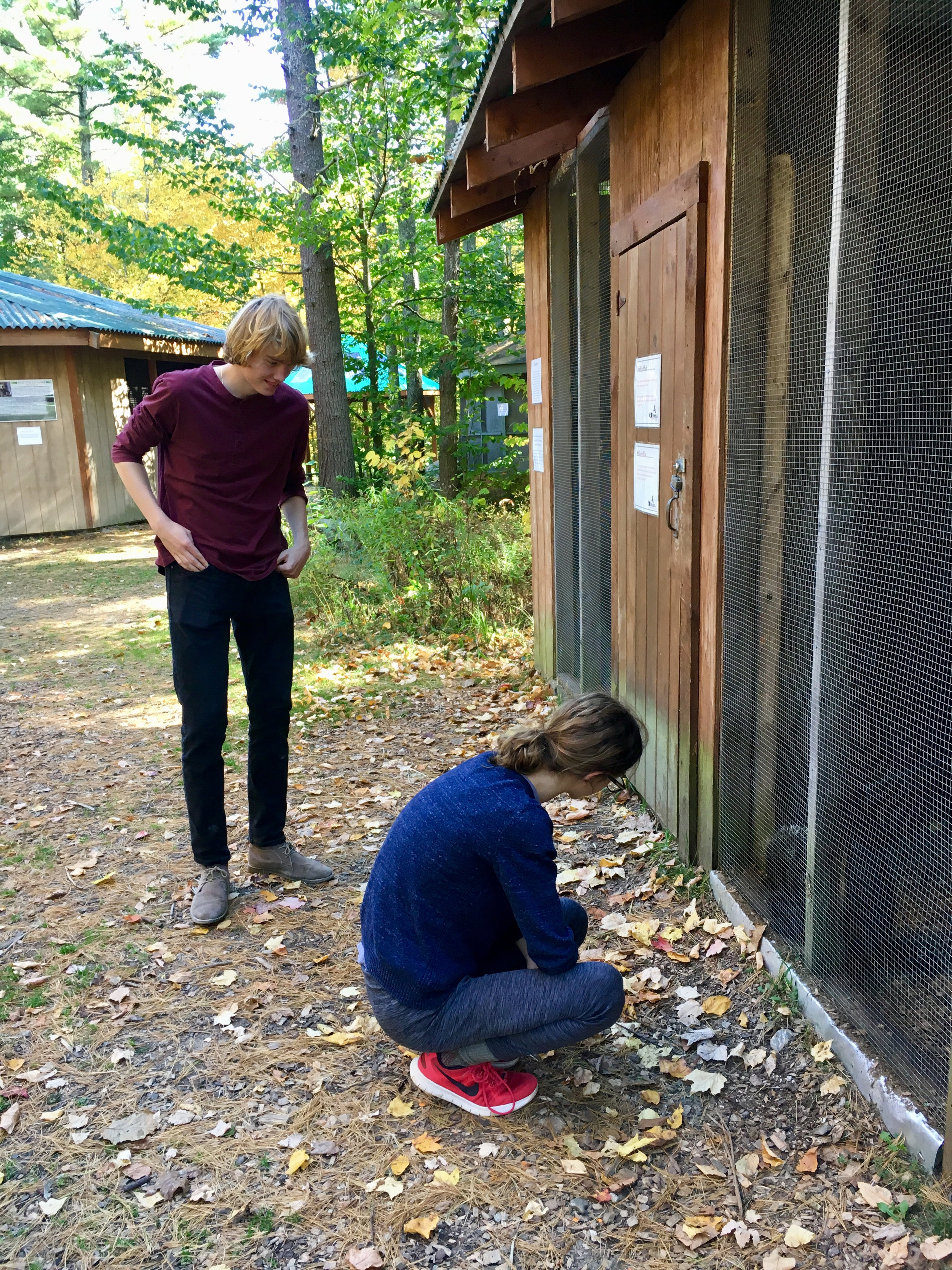 Brendan and Anna admire a porcupine