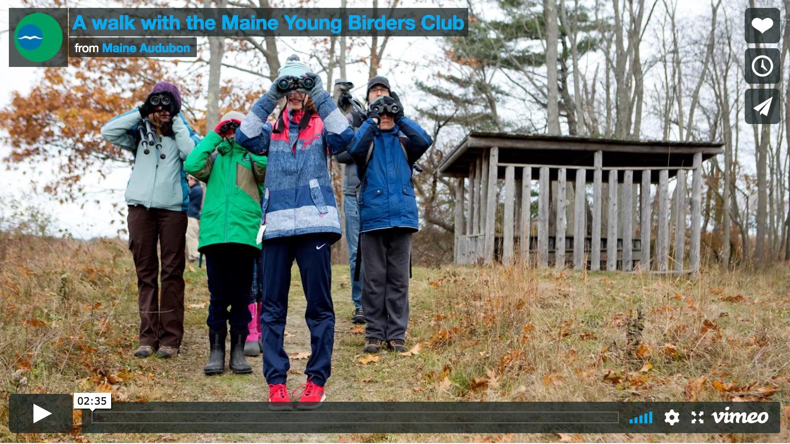 Maine Audubon video.jpg