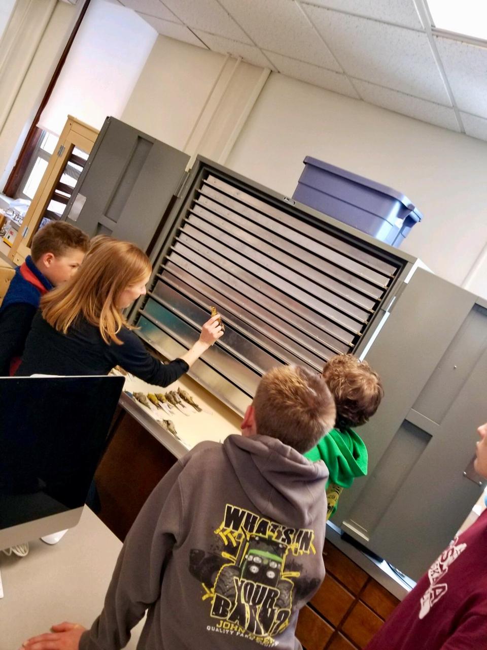 Opening an ornithology specimen case