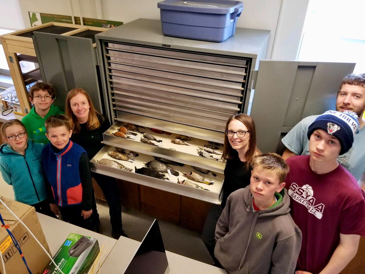 Checking out the bird museum specimens