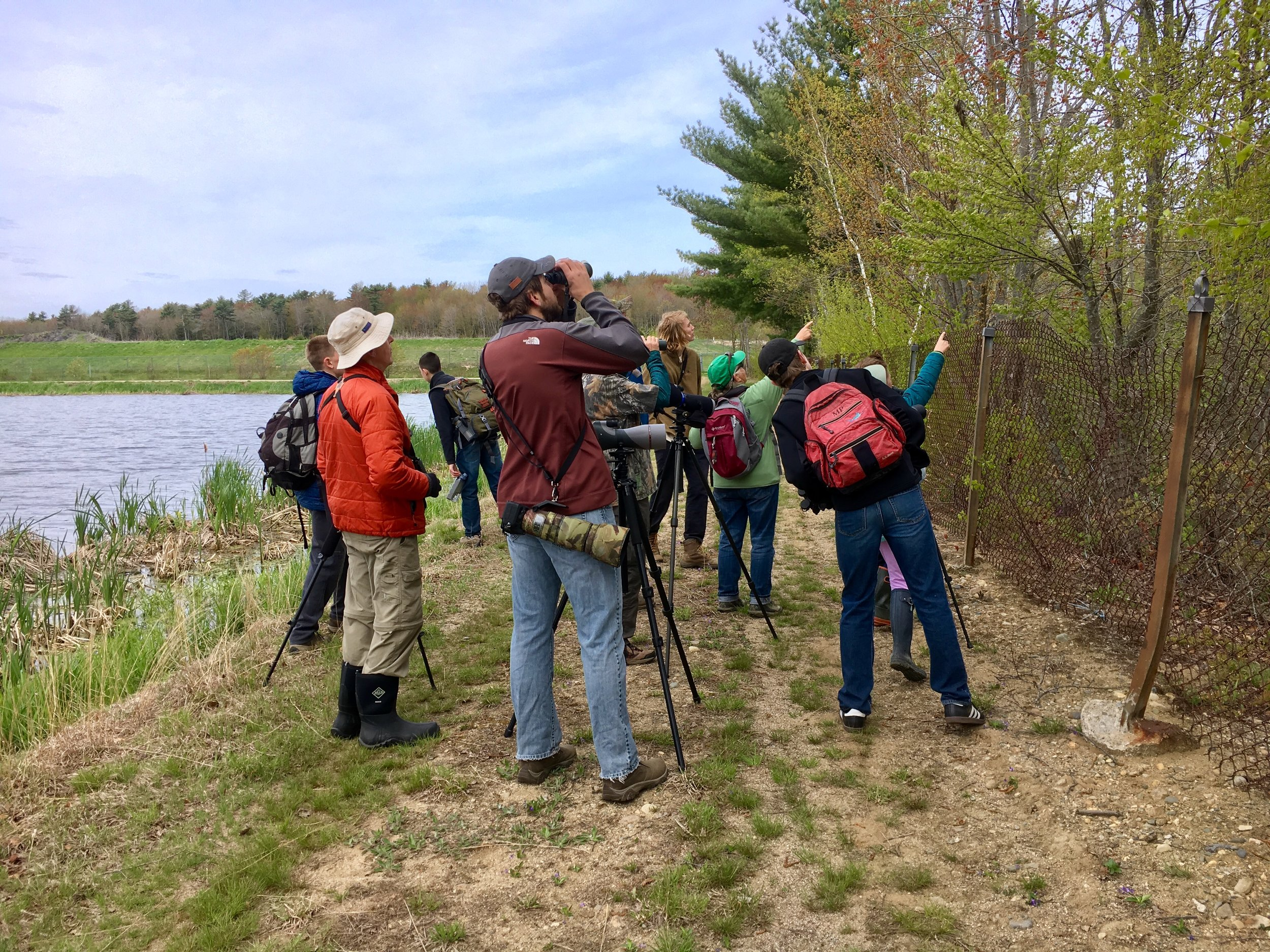 Looking for those warblers!