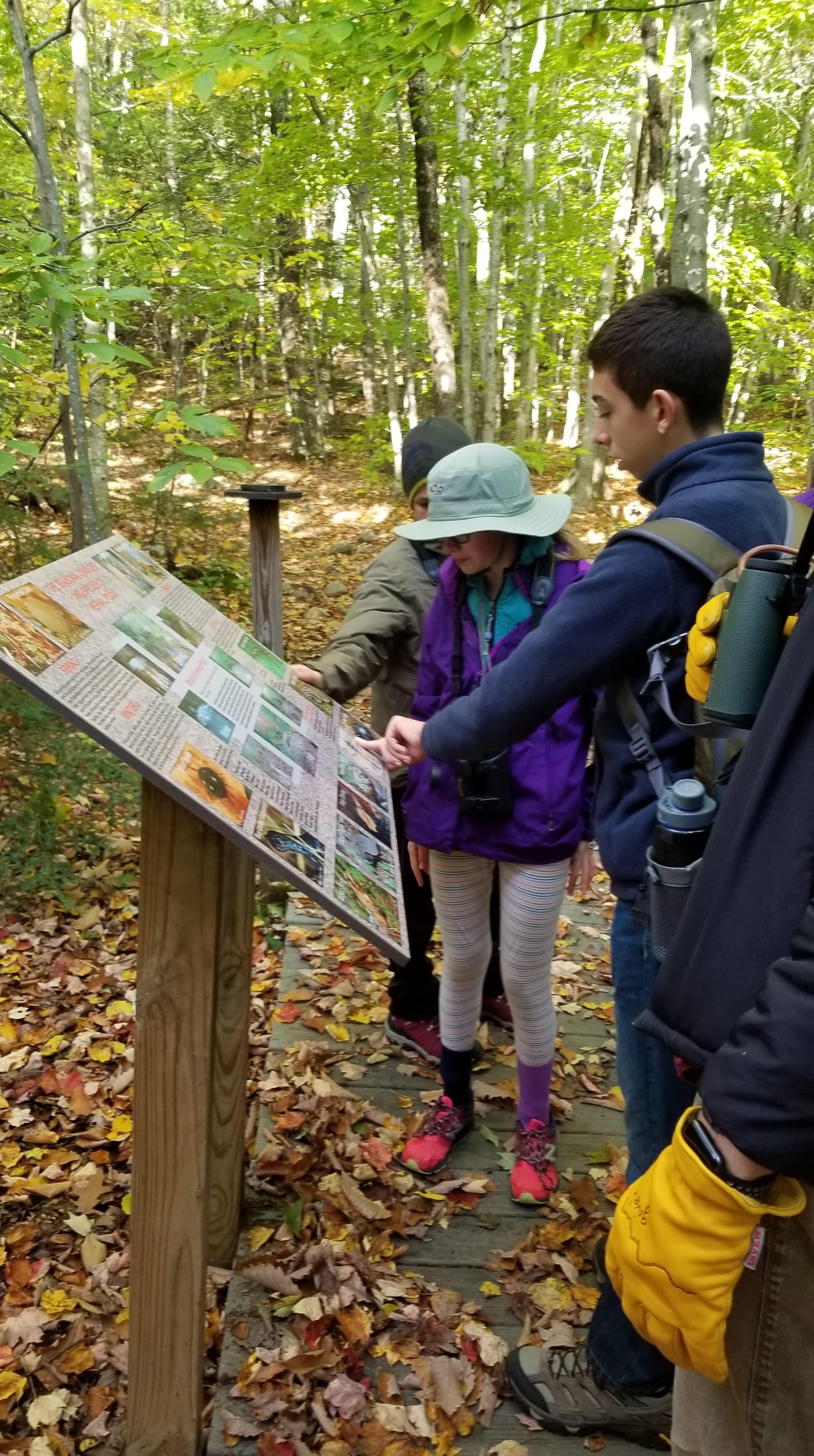 Learning about the local vernal pools