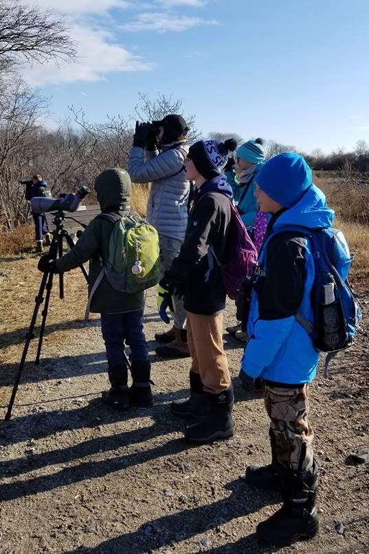 Scanning for birds and taking in the fantastic views of the red fox.