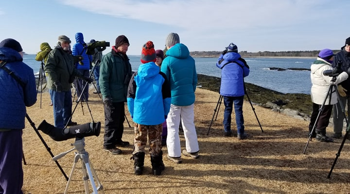 Meet up with Merry Meeting Audubon chapter at Kettle Cove