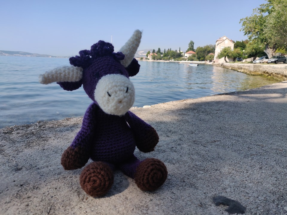 The Purple Cow enjoying the sunshine in Croatia