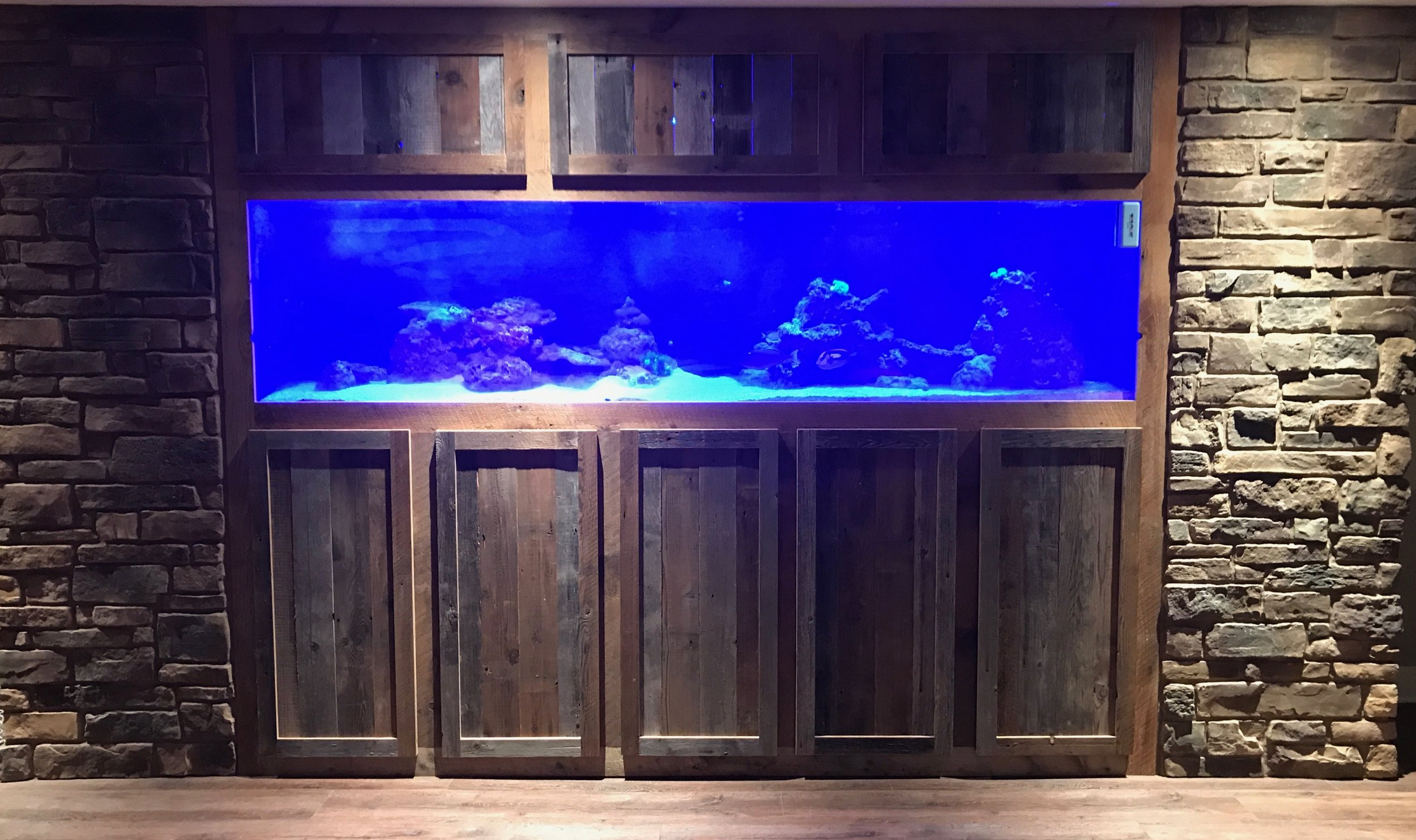 Built in 400 gallon reef tank