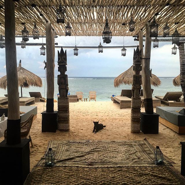 Magnifique restaurant en bord de mer 🌊 💙 #bali #nusalembongan #voyage