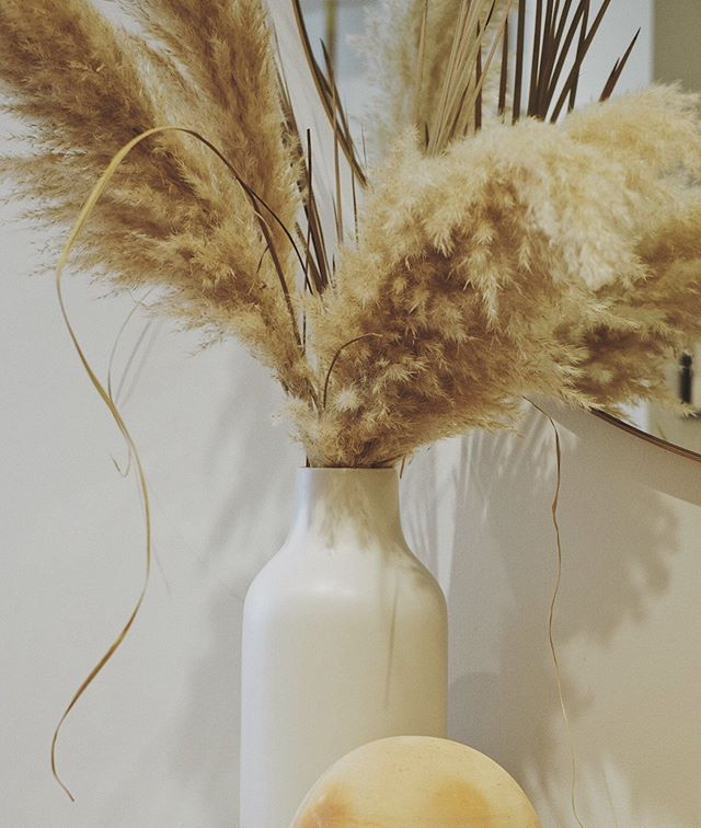 Pampas grass, I'm all over you! This store has my name on it 🥰 @parachutehome 📷 @yuxin_hu . . . . . . #liveauthentic #visualsoflife #nothingisordinary #artofvisuals #thehappynow #abmlifeiscolorful #photooftheday #flashesofdelight #chasinglight #calledtobecreative #finditliveit #myunicornlife  #ig_myshots #lifestyleblogger #weekend #pursuepretty #soloverly #weekendvibes #calmversation #slowlived #thatauthenticfeeling #artistry_vision #livecolorfully #theeverydayproject #postitfortheaesthetic #inspiremyinstagram #chooselovely #cornersofmyworld #smallmomentsofcalm