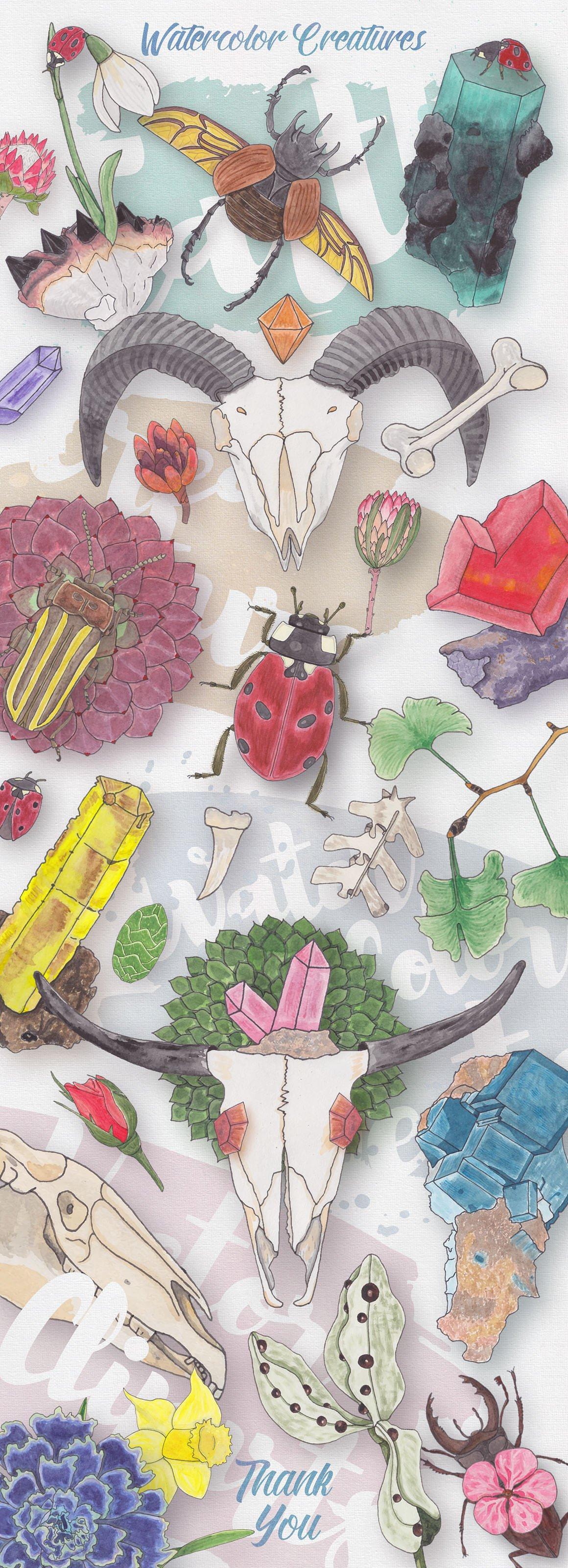 Watercolor Creatures vol.1