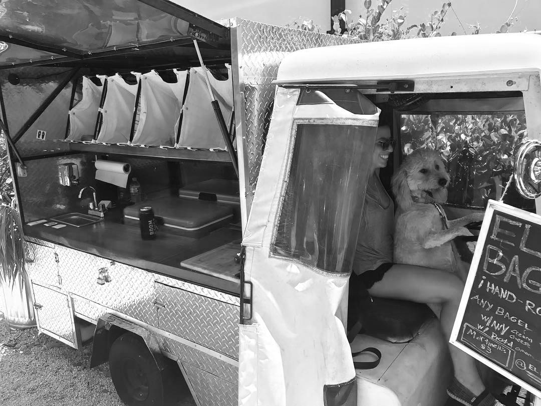 Truck+Pups.jpg