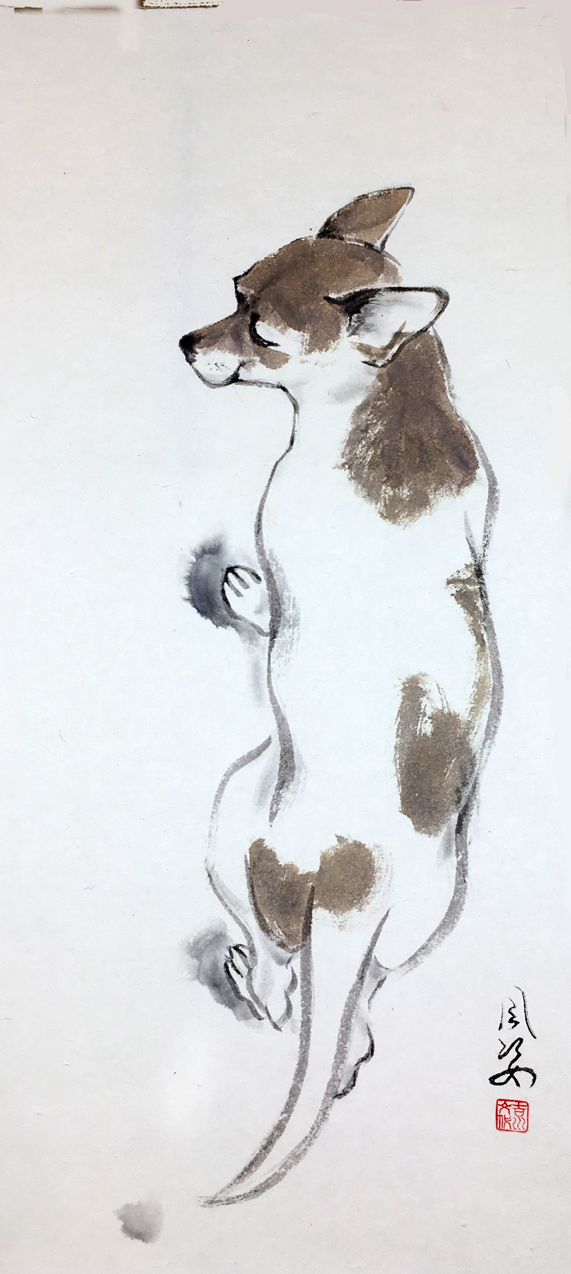 Little dog by Fumiyo