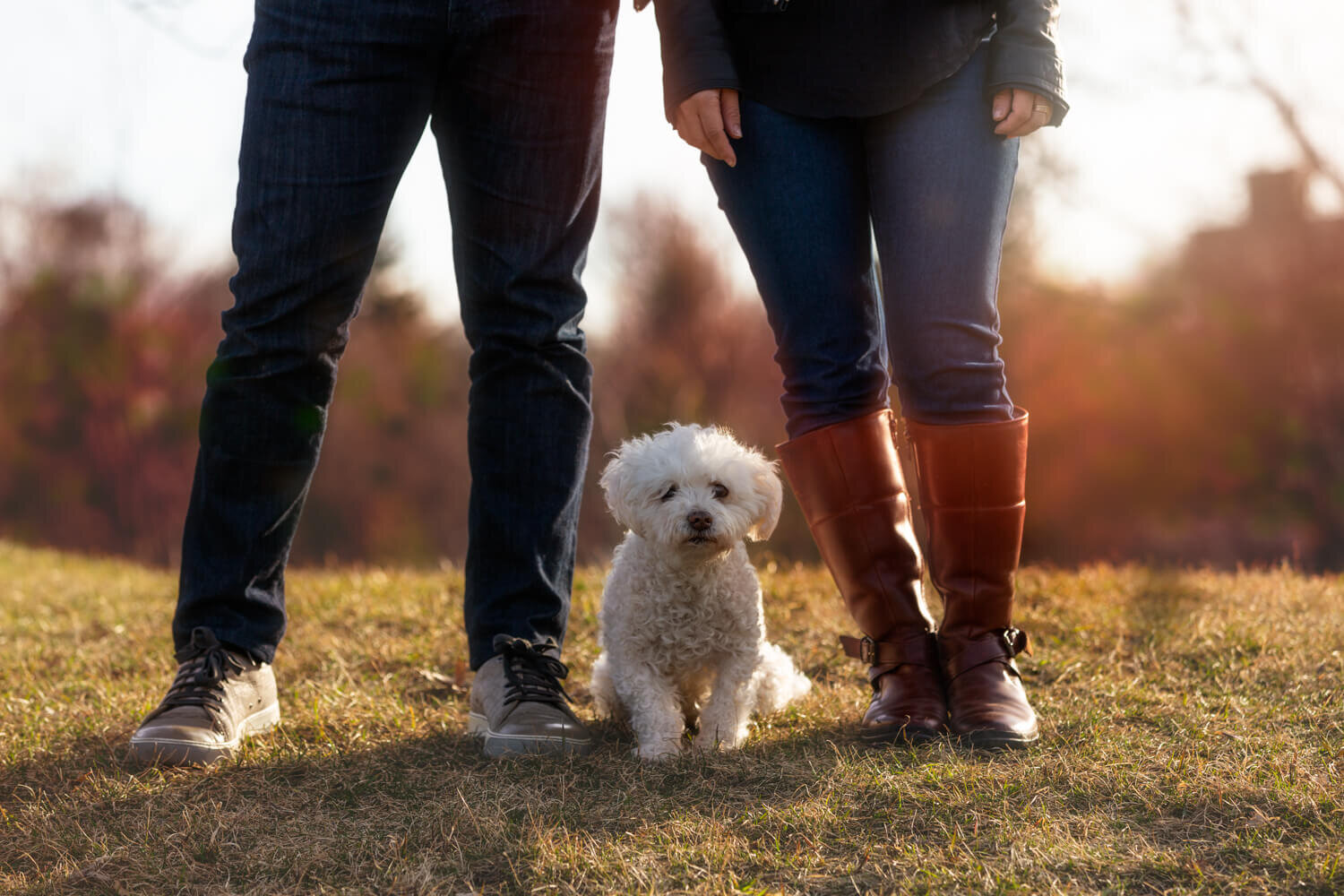 Toronto Fall pet and family photography