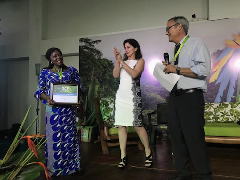 Dr. Alice Ekwu receives the Everyday Hero Award at the 2019 GCF Task Force Annual Meeting