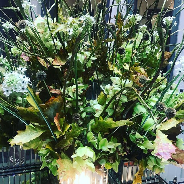 An appropriately fabulous Autumnal display at my fave spot @Corinthia london today ✨ October is the month of magic and we're honouring this @electric.woman with our Magic and Manifestation Breakfast on October 18th at Rakes Cafe, Liverpool St at 830-1030am! Do come along. DM us for details ⚡️