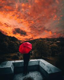 Umbrella @michaelste