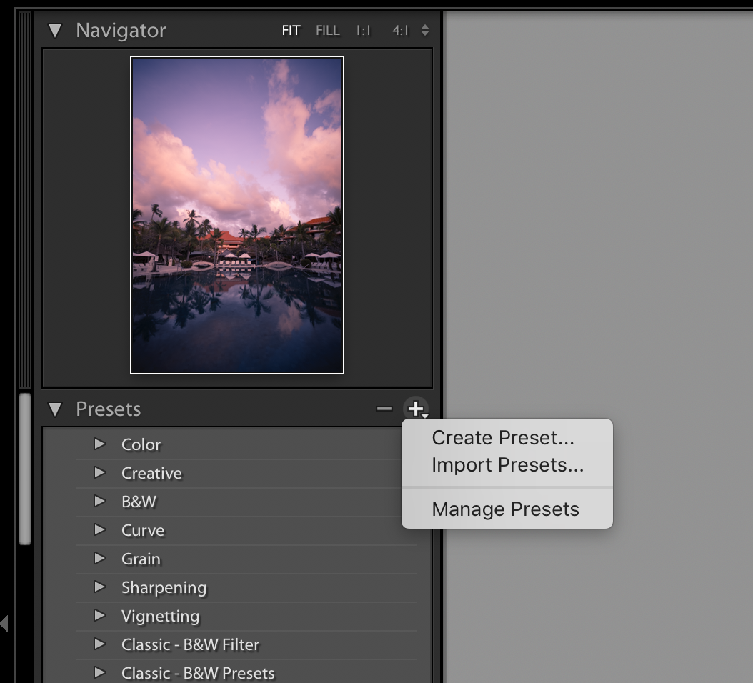 Click the plus icon to create a new preset or to import presets that you have purchased.