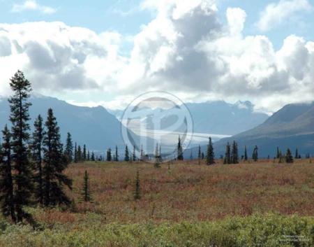 "Alaskan Glacier 14"" x 11"" photograph"