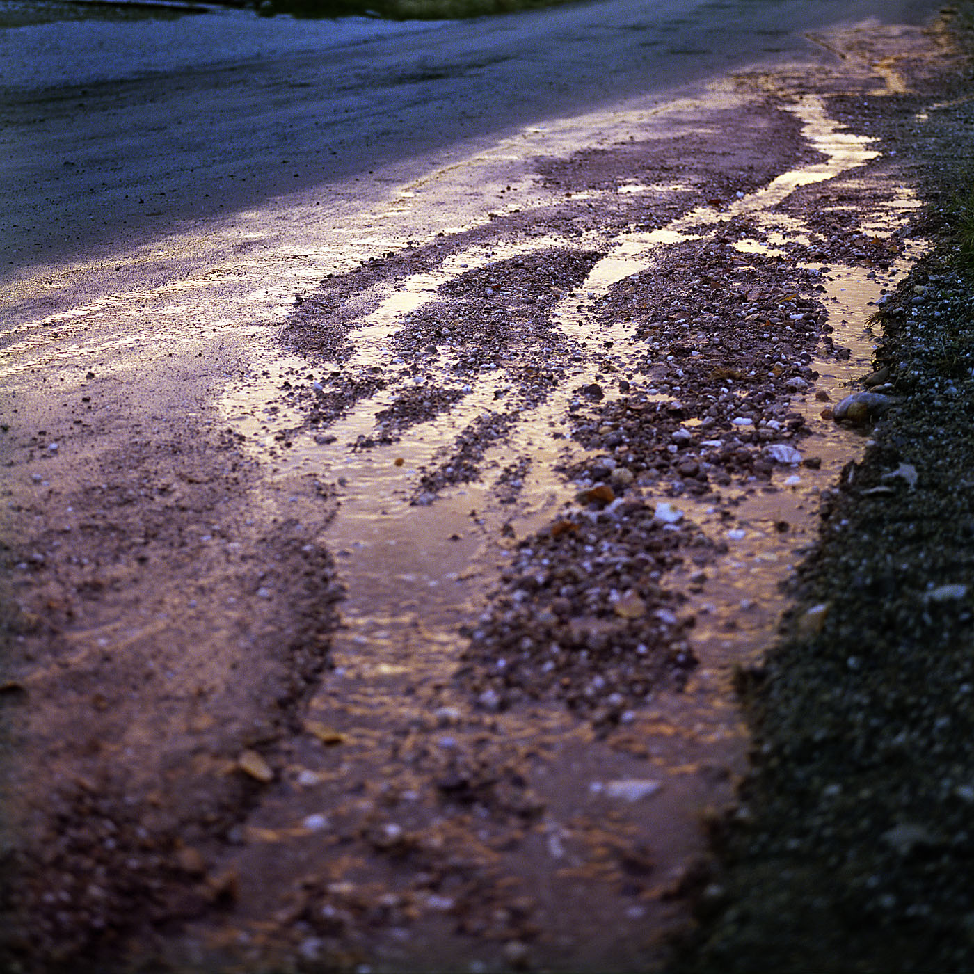 After The Rain_v01.jpg