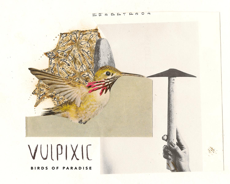 VULPIXIC - BIRDS OF PARADISE