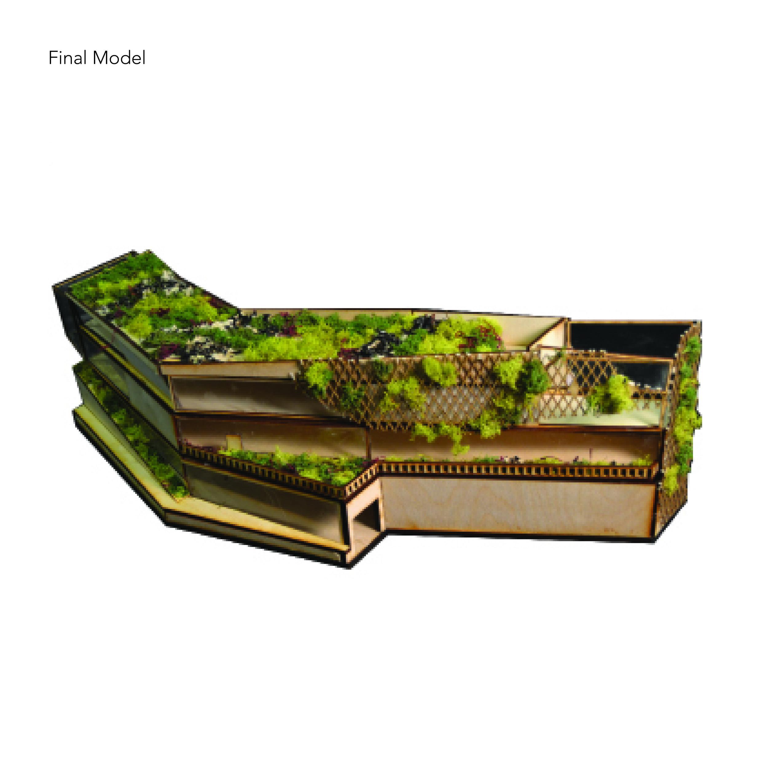 17 0221 Edible Schoolyard gallery image 12.jpg